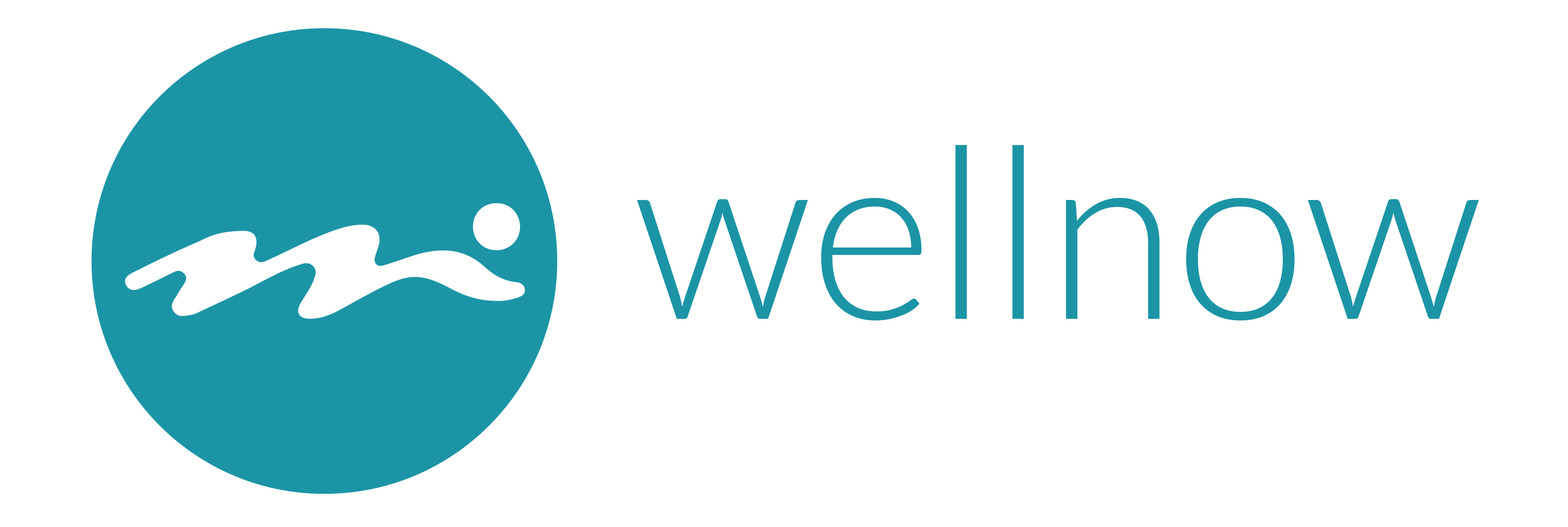 wellnow logo horizontal
